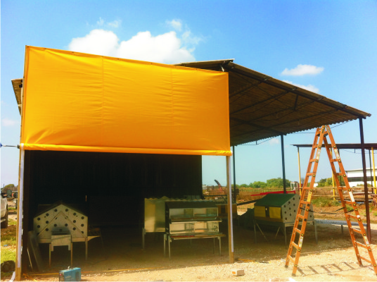 images_agriculture_yellow_curtain_shlomi1